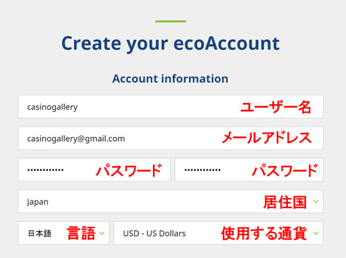 ecoPayz(エコペイズ)口座開設の登録手順2